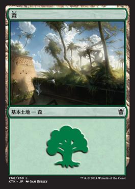 《森/Forest》(266)[KTK] 土地