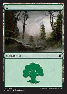 《森/Forest》(268)[KTK] 土地