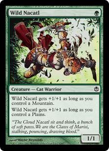 野生のナカティル