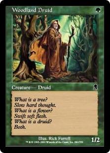 森林地帯のドルイド