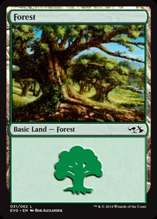《森/Forest》(31)[DD3・EvG] 土地