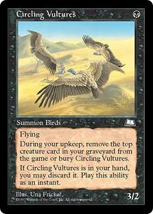 《待ち受ける禿鷹/Circling Vultures》[WTH] 黒U