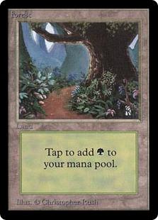 《森/Forest》A(Path) Christopher Rush[LEB] 土地