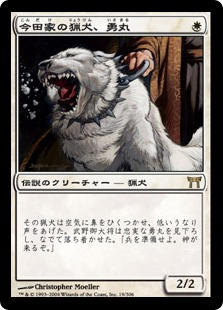 今田家の猟犬、勇丸