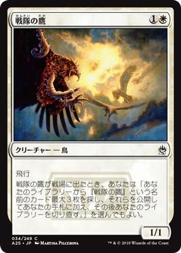 《戦隊の鷹/Squadron Hawk》[A25] 白C
