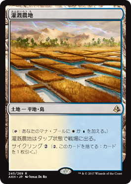 《灌漑農地/Irrigated Farmland》[AKH] 土地R