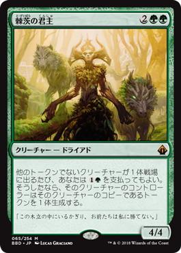 【foil】《棘茨の君主/Bramble Sovereign》[BBD] 緑R