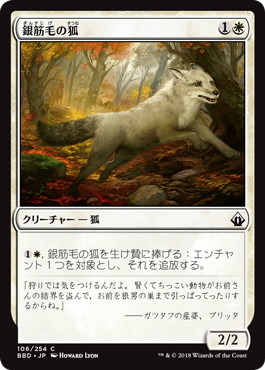 《銀筋毛の狐/Silverchase Fox》[BBD] 白C