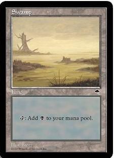 《沼/Swamp》[TMP]D 土地