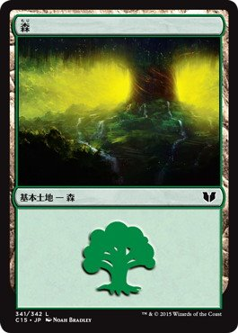《森/Forest》[C15] (341)土地