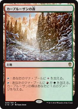 《カープルーザンの森/Karplusan Forest》[C16] 土地R