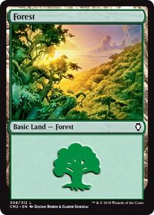 《森/Forest》[CM2] 土地 (308)
