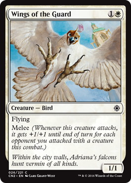 《護衛隊の翼/Wings of the Guard》[CN2] 白C