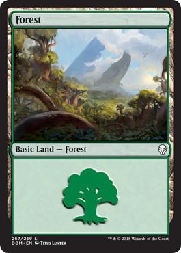 《森/Forest》[DOM] 土地 (267)