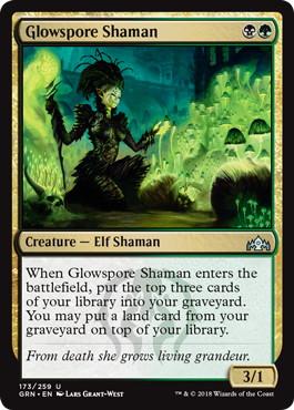 《光胞子のシャーマン/Glowspore Shaman》[GRN] 金U