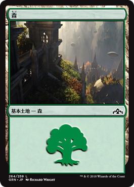《森/Forest》[GRN] 土地(264)
