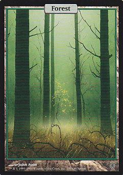 《森/Forest》[UNH] 土地