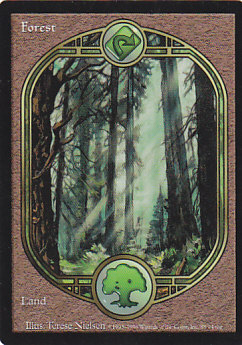 《森/Forest》[UGL] 土地