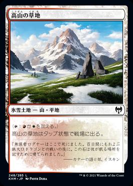 高山の草地