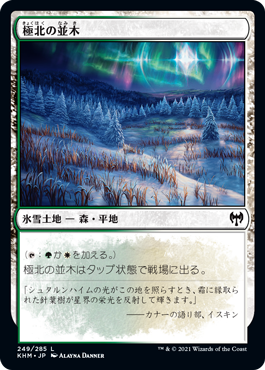 極北の並木
