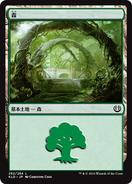 《森/Forest》[KLD] 土地 (262)