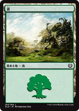 《森/Forest》[KLD] 土地 (263)