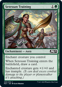 《セテッサ式訓練/Setessan Training》[M21] 緑C