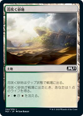《花咲く砂地/Blossoming Sands》[M21] 土地C