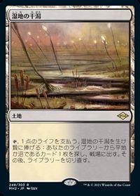 湿地の干潟