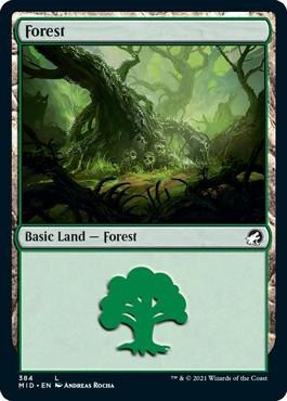 《森/Forest》[MID] 土地(384)