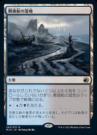 難破船の湿地