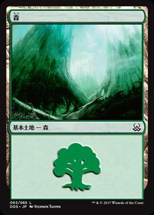 《森/Forest》[MvM] 土地 (65)