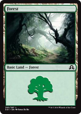 《森/Forest》[SOI] 土地 (295)