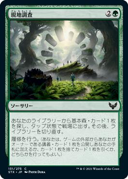 《現地調査/Field Trip》[STX] 緑C
