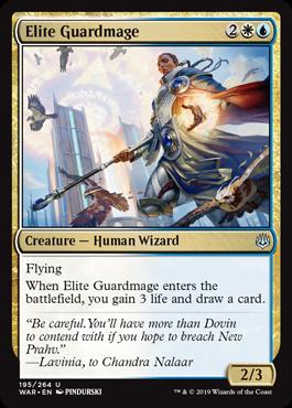 Elite Guardmage