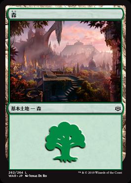 《森/Forest》[WAR](262)