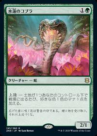 水蓮のコブラ