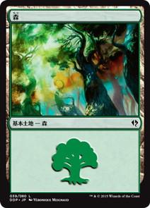 《森/Forest》[ZvE] 土地 (39)
