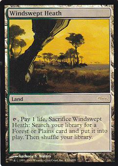【Foil】《吹きさらしの荒野/Windswept Heath》[ジャッジ褒賞] 土地