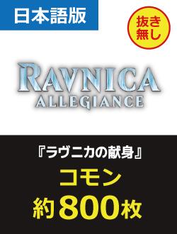 【JP】ラヴニカの献身コモン 約800枚