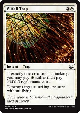Pitfall Trap