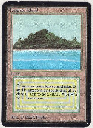 《Tropical Island》[LEA] 土地R