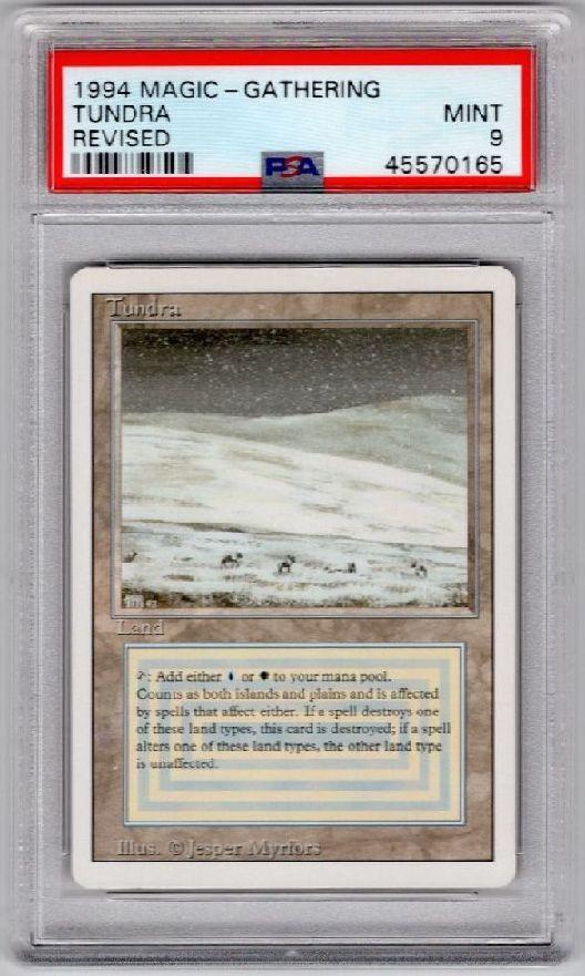 《Tundra》[3ED] 土地R