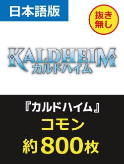【JP】カルドハイムコモン 約800枚