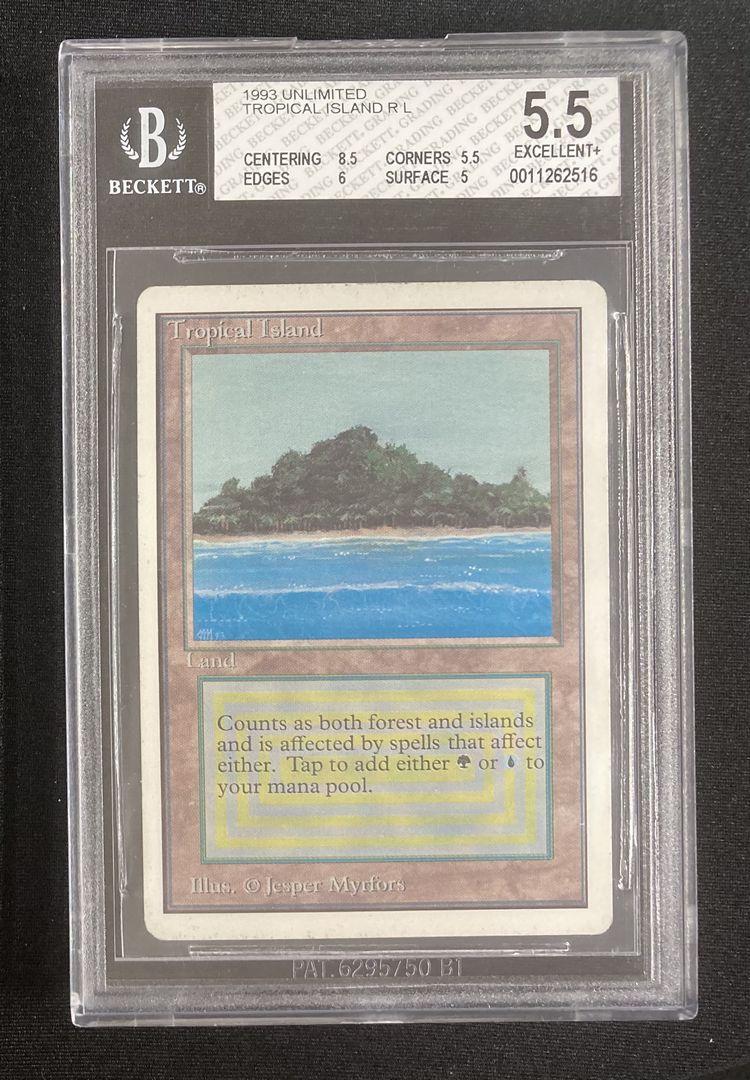 《Tropical Island》[2ED] 土地R